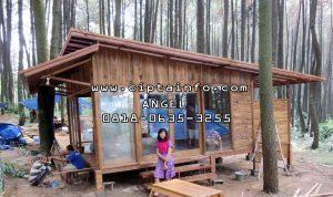 jual rumah kayu di tual maluku